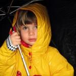 חיים בטוח: ניהול תכנית הביטוחים המשפחתית