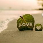 חתונה - אירוע של פעם בחיים לא צריך לשלם כל החיים