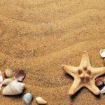 לוחופש - לוח לתכנון פעילויות החופש הגדול עם הילדים